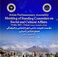 APA Standing Committee on Social and Cultural Affairs to Meet Next Week